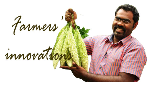 Farmer's Innovation